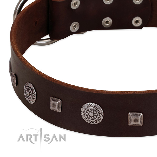 High quality leather dog collar with unusual decorations