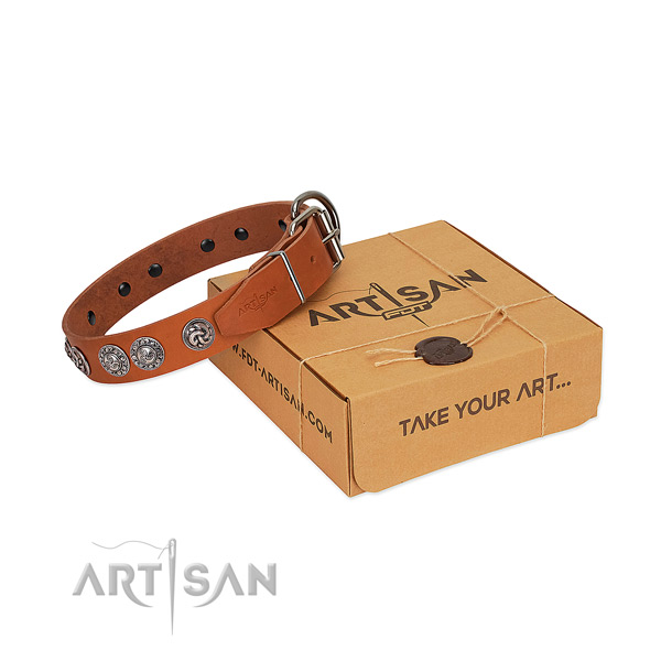 Amazing full grain leather collar for your canine daily walking