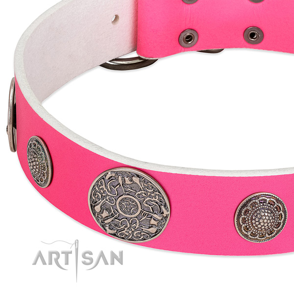 Reliable adornments on full grain leather dog collar