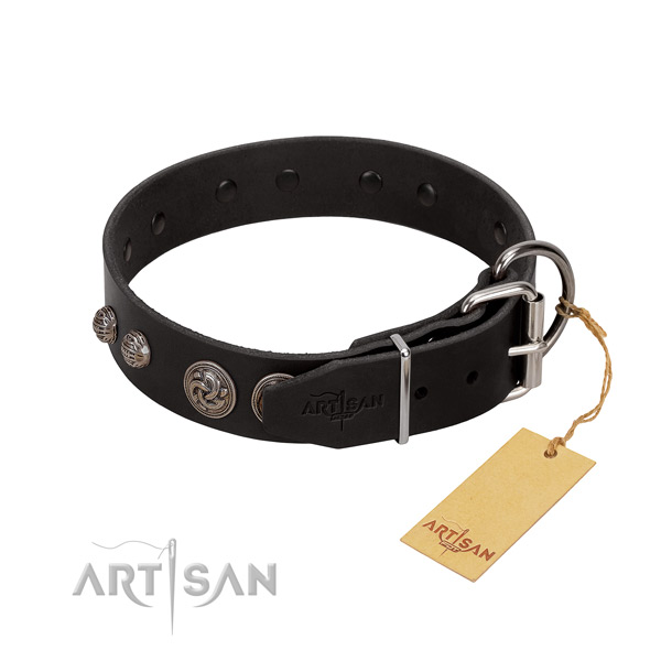 Embellished full grain genuine leather dog collar with corrosion proof buckle