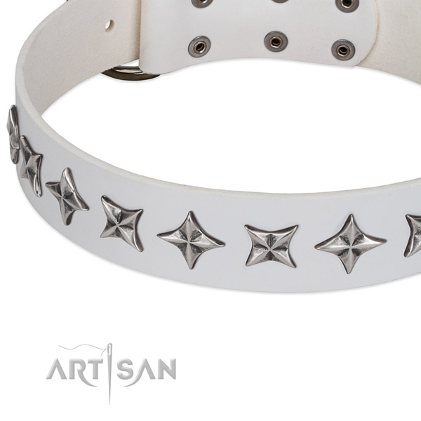 Everyday use embellished dog collar of best quality full grain natural leather