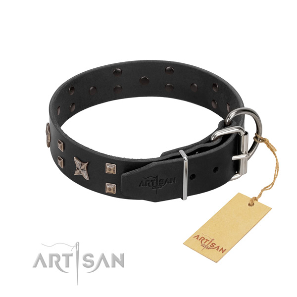 Top rate full grain natural leather dog collar for your handsome pet