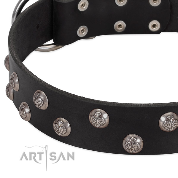 Leather dog collar with corrosion resistant buckle and adornments