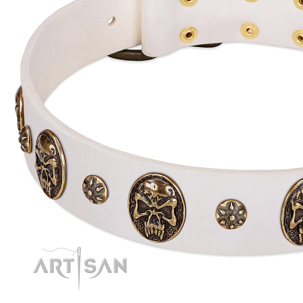 Reliable adornments on natural genuine leather dog collar for your dog