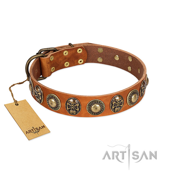 Easy to adjust full grain leather dog collar for everyday walking your doggie
