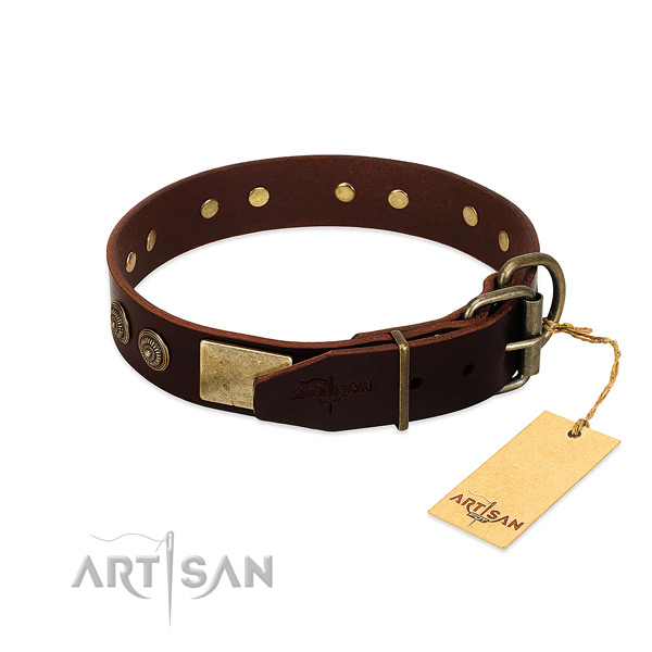 Corrosion proof studs on full grain genuine leather dog collar for your pet