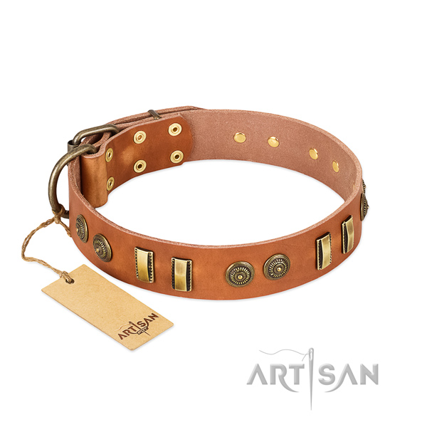 Reliable buckle on leather dog collar for your dog