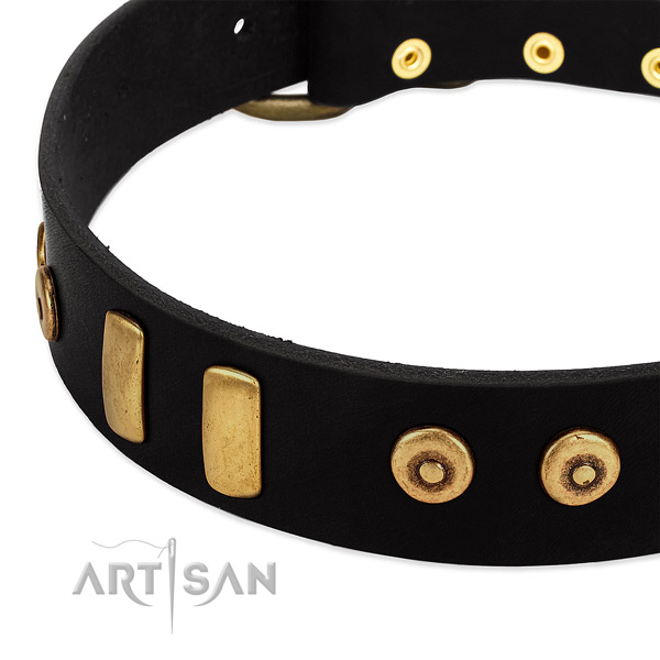 Gentle to touch natural leather collar with designer studs for your dog