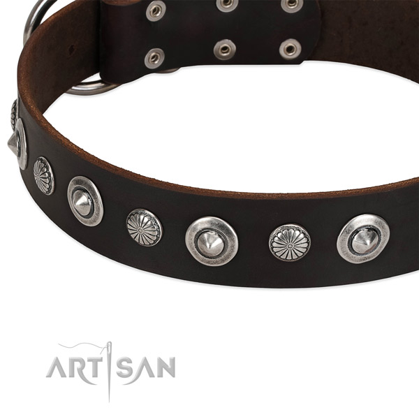 Exceptional studded dog collar of top notch leather
