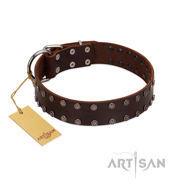 Walking leather dog collar with exceptional embellishments