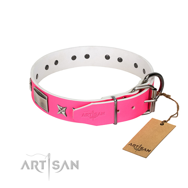 Convenient dog collar of leather