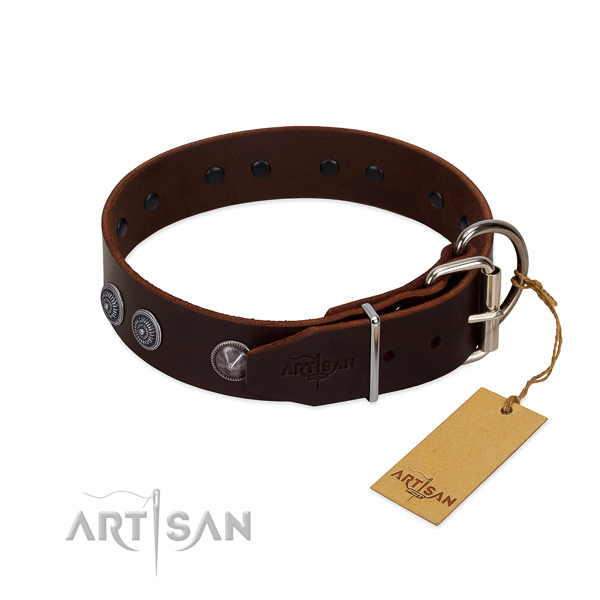Adorned full grain leather dog collar for everyday walking