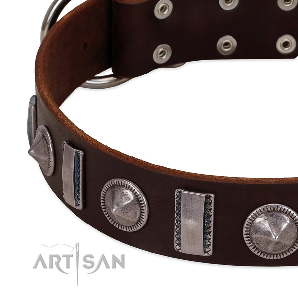 Unusual embellished full grain natural leather dog collar for fancy walking