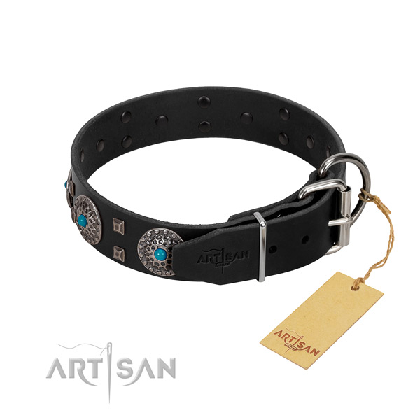 Top rate full grain leather dog collar with adornments for everyday walking