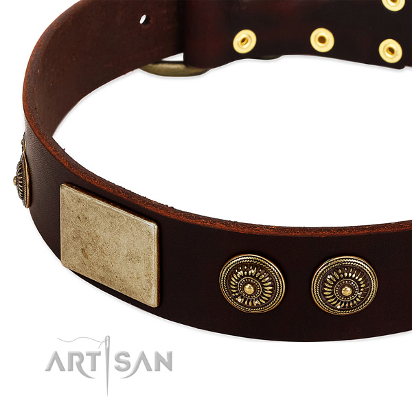 Rust-proof embellishments on genuine leather dog collar for your dog