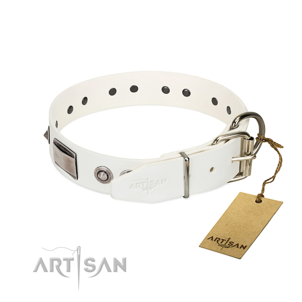 Impressive dog collar of full grain natural leather with decorations