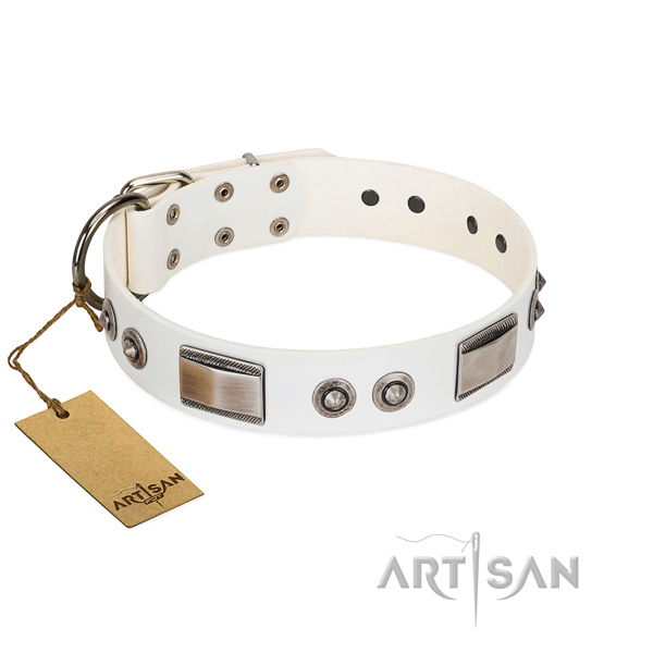Exceptional dog collar of natural leather with studs