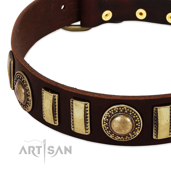 Reliable full grain leather dog collar with reliable buckle