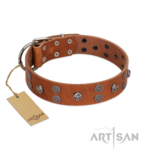 Soft to touch genuine leather dog collar with studs for handy use