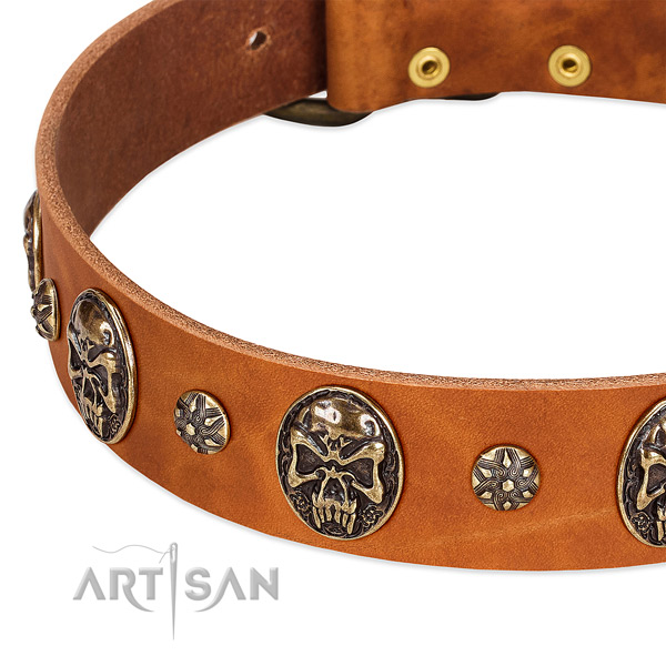 Rust resistant fittings on full grain natural leather dog collar for your doggie