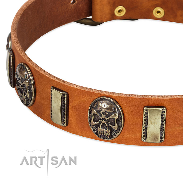 Durable studs on full grain genuine leather dog collar for your dog