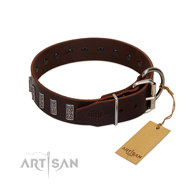 Rust-proof traditional buckle on full grain leather dog collar for stylish walking your doggie
