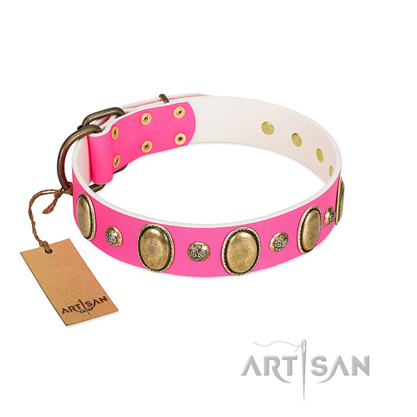 Full grain leather dog collar of top notch material with designer studs