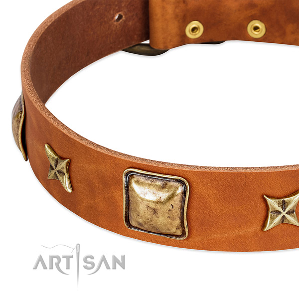 Rust-proof decorations on leather dog collar for your pet