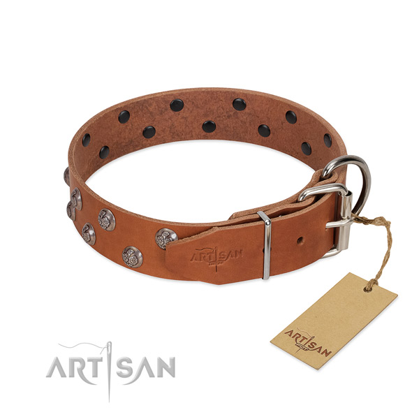 Rust resistant fittings on embellished full grain genuine leather dog collar