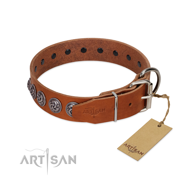 Corrosion proof hardware on impressive genuine leather dog collar