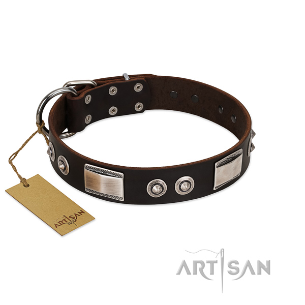 Amazing collar of full grain leather for your doggie