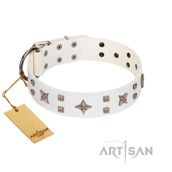 Walking full grain natural leather dog collar with remarkable decorations