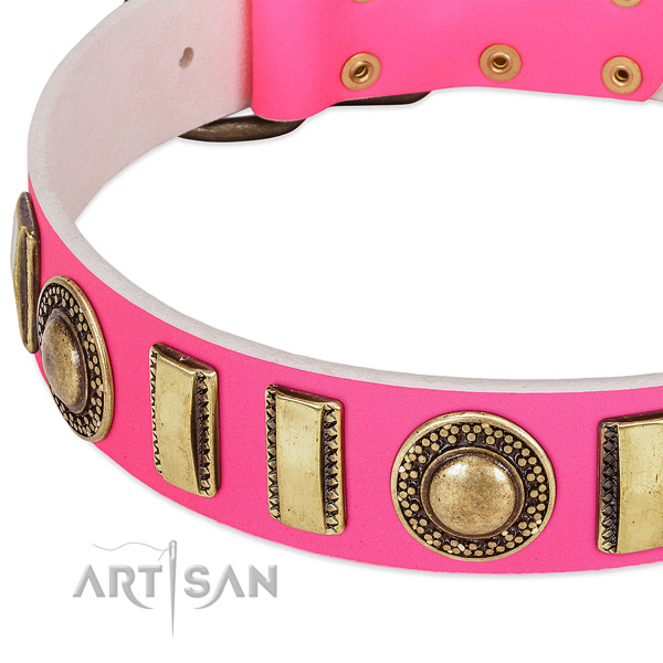 Top rate genuine leather dog collar for your stylish canine