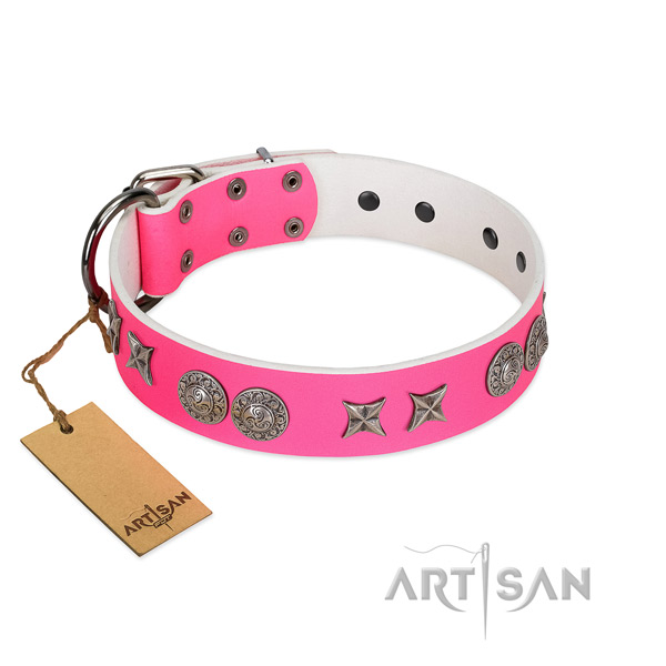 Full grain leather collar with exquisite adornments for your pet