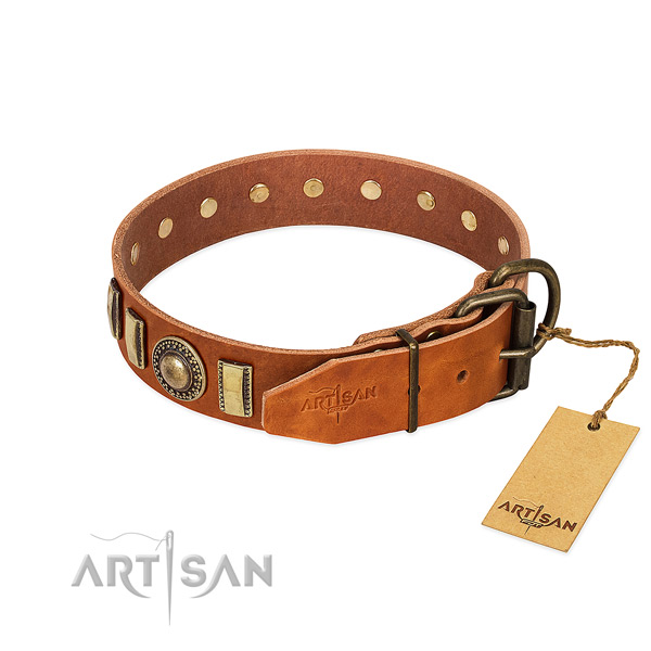 Designer natural leather dog collar with corrosion proof buckle
