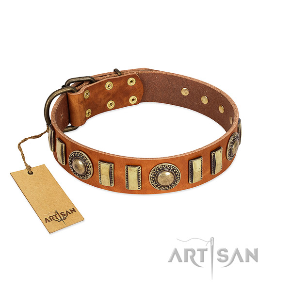 Soft genuine leather dog collar with rust resistant hardware