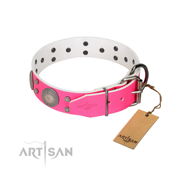 Everyday walking studded full grain leather dog collar