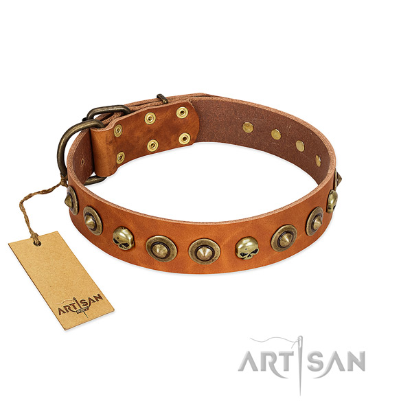 Natural leather collar with inimitable embellishments for your canine