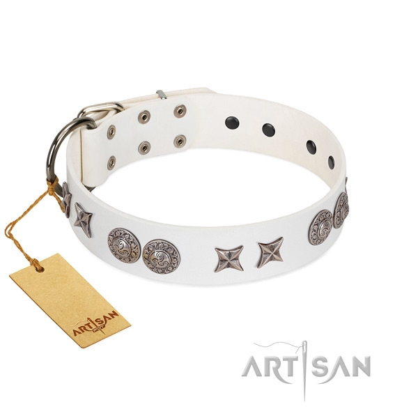 Natural leather collar with stylish design adornments for your four-legged friend
