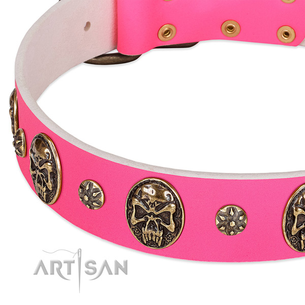 Stunning dog collar crafted for your beautiful doggie