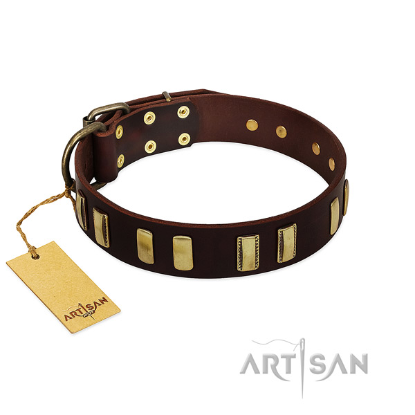 Natural leather dog collar with rust resistant fittings for comfortable wearing