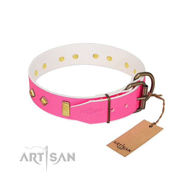 Full grain leather dog collar with durable D-ring for daily use