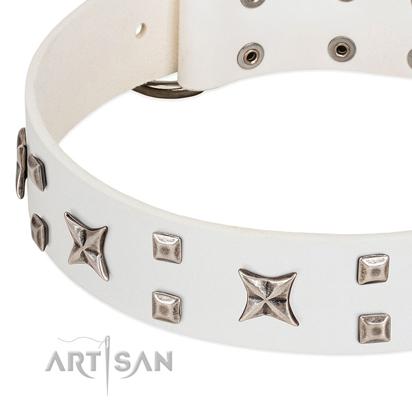 Soft leather dog collar with embellishments for walking