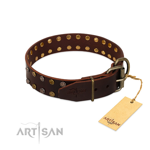 Everyday walking full grain leather dog collar with remarkable adornments