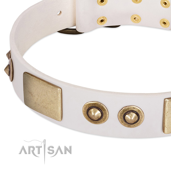 Corrosion resistant adornments on full grain leather dog collar for your dog