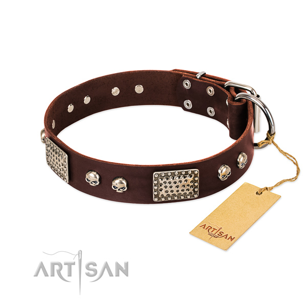 Easy adjustable full grain natural leather dog collar for stylish walking your four-legged friend