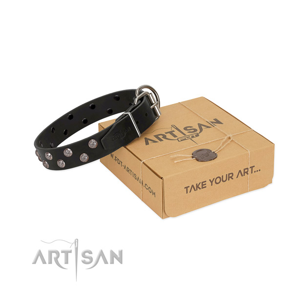 Top rate full grain natural leather dog collar with stylish embellishments