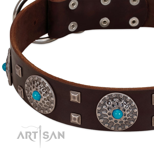 Quality full grain leather dog collar with unusual decorations