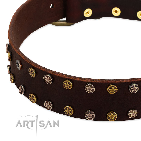 Daily walking full grain genuine leather dog collar with designer studs