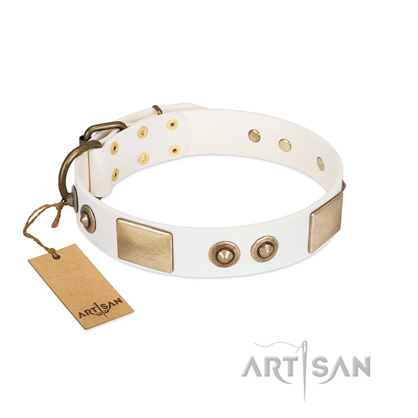 Rust-proof adornments on full grain genuine leather dog collar for your pet